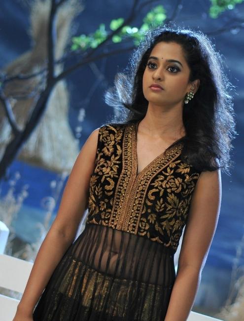 Nanditha Prema Katha Chitram Heroine Hollywood Images -7033