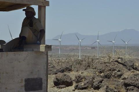 A zöldenergia-projektek növekvő veszélyt jelentenek a természetvédelmi területekre egy új kutatás szerint