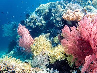 Mejangan-Island-Bali