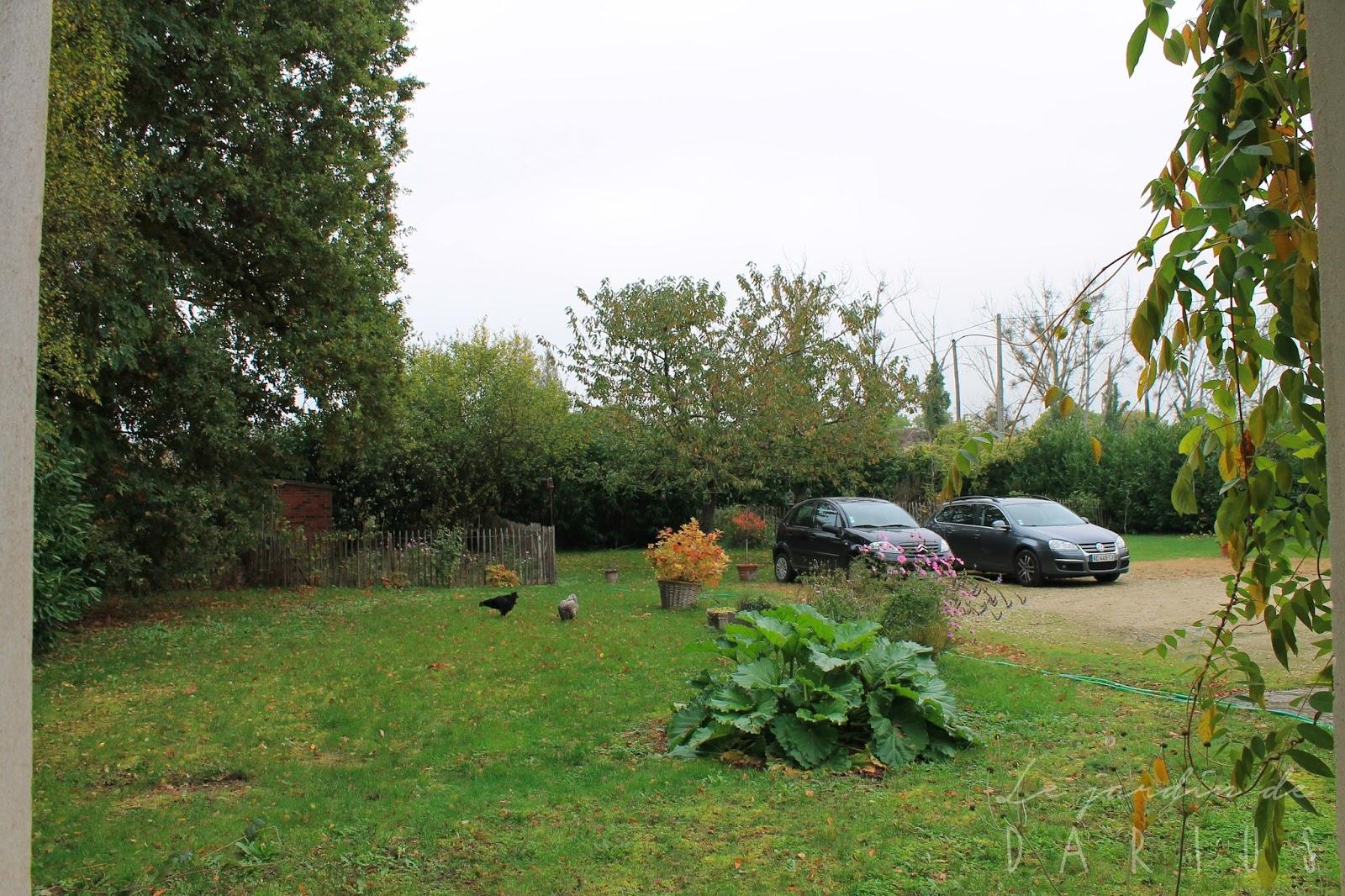 Le jardin de darius jeu chambre avec vue for Le jardin en juin