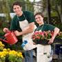 Lowongan, Kerja, keluar, Negeri, Kerja, Suami, Istri