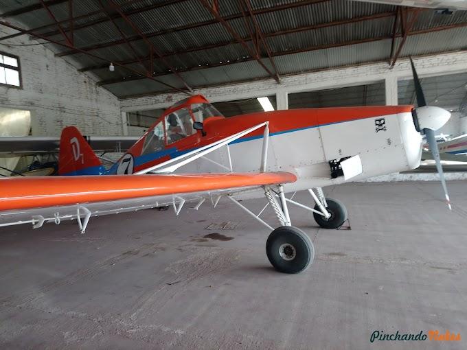 Dusty: El nuevo intregrante del Aeroclub San Martín de Mendoza