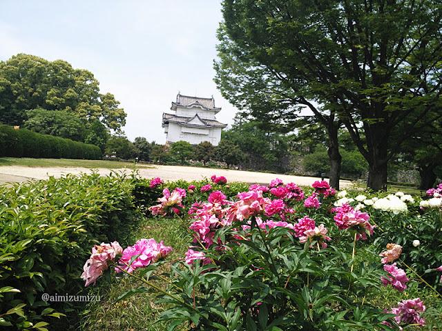 Taman Ninja di Nagoya Castle