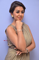 Nikki Galrani in Saree 028.JPG