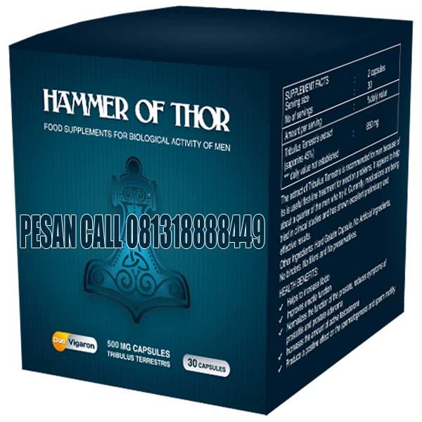 jual hammer of thor asli makassar obat klg asli hammer