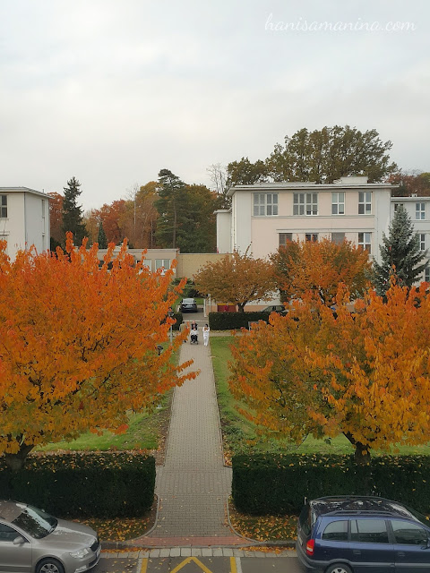 image for autumn in Hradec Kralove, Czech