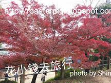 2018年12月四國紅葉速報(更新12月5日)