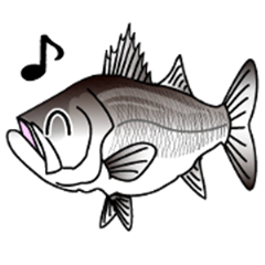 Lure-fishing sea bass