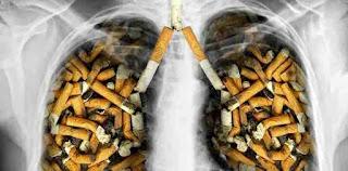Akibat Merokok, Penyakit Kronis Bersarang Pada Organ Tubuh