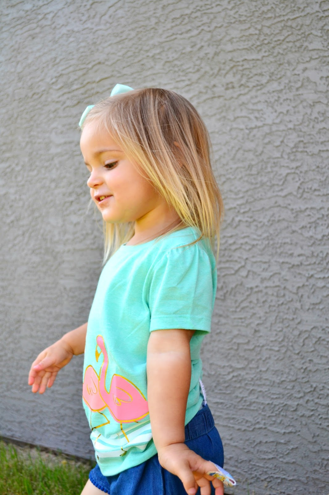 http://www.target.com/p/toddler-girls-flamingo-short-sleeve-graphic-tee-green-circo/-/A-50196949#prodSlot=medium_1_2&term=flamingo+tee