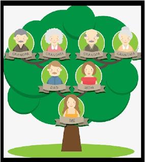 شجرة العائلة باللغة الانجليزية