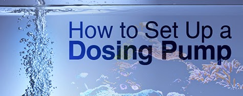How to Set Up a Dosing Pump - Marine Depot Blog