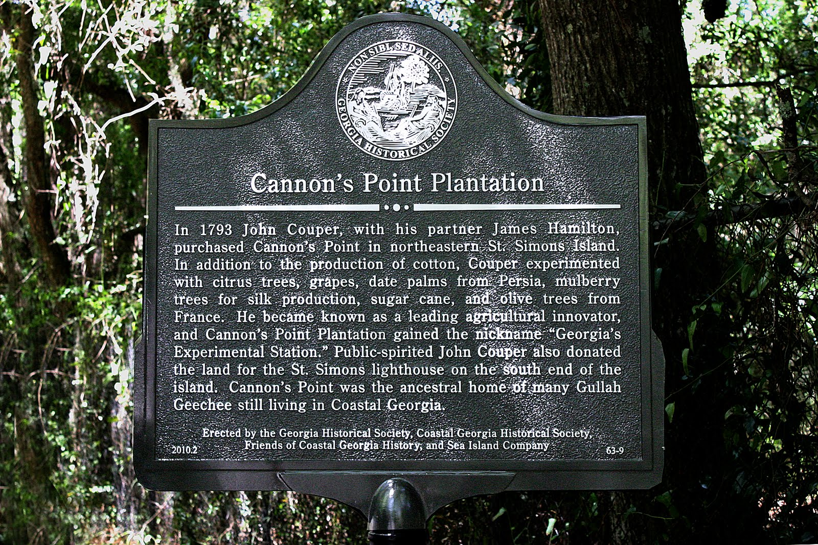Cannon S Point St Simons Island
