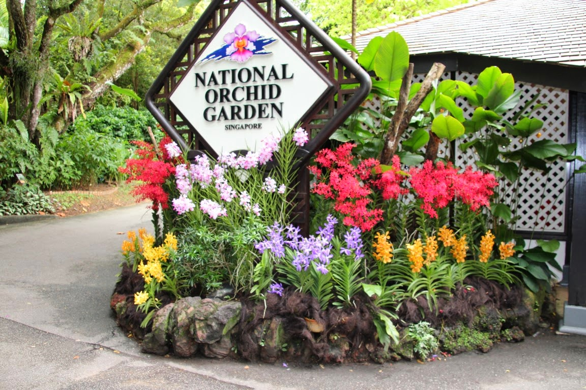 National Orchid Garden Singapur (JUREBU)
