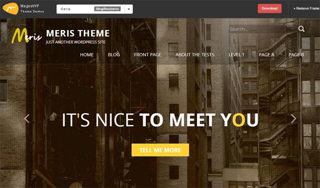 Template WordPress cho doanh nghiệp miễn phí