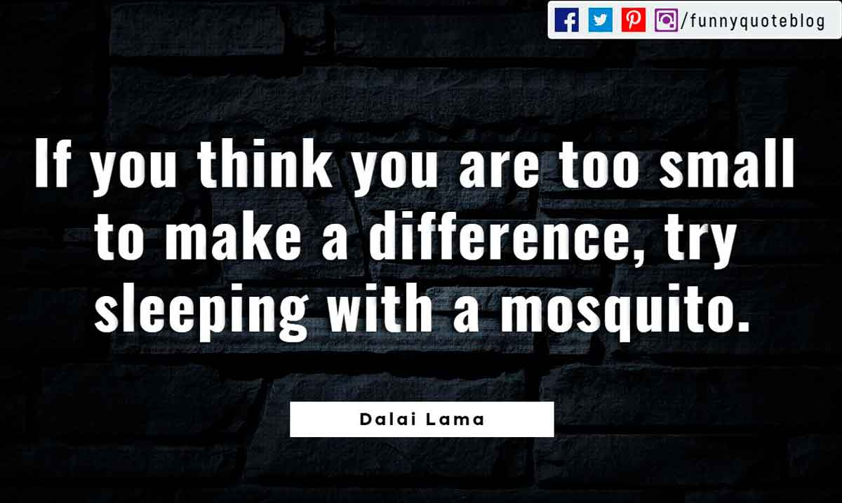 If you think you are too small to make a difference, try sleeping with a mosquito. ― Dalai Lama Quote
