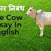 गाय पर निबंध - The Cow Essay In English