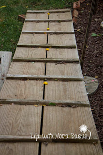 A golden sight word trail