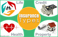 Notes on a Few Important Insurance Types