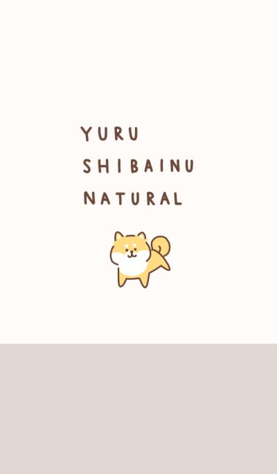 yuru shibainu natural