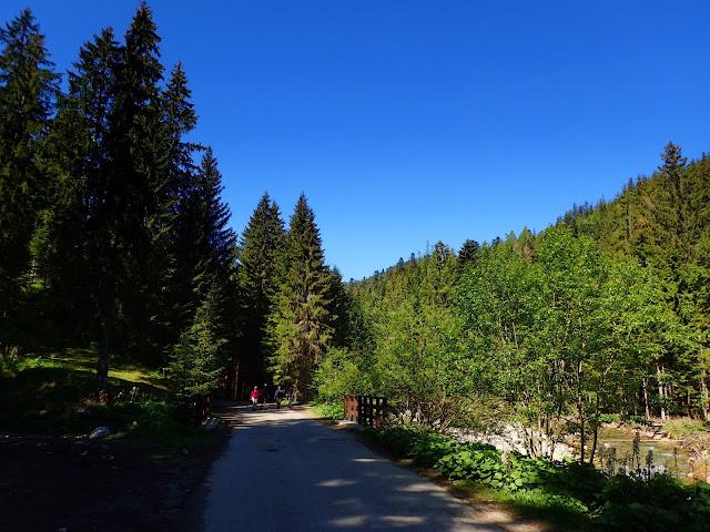 Asfaltowa droga przez Dolinę Chochołowską