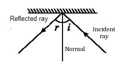 CBSE PHYSICS: 8th physics light reflection refraction eyes