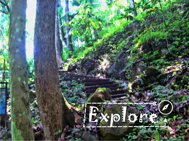 Explore Makiling Botanic Garden