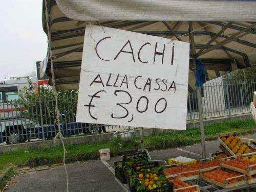 Barzellettiamo di cosa ridono gli italiani - Cartello bagno donne ...