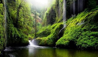 Puisi Romantis tentang Keindahan Alam dalam Bahasa Indonesia