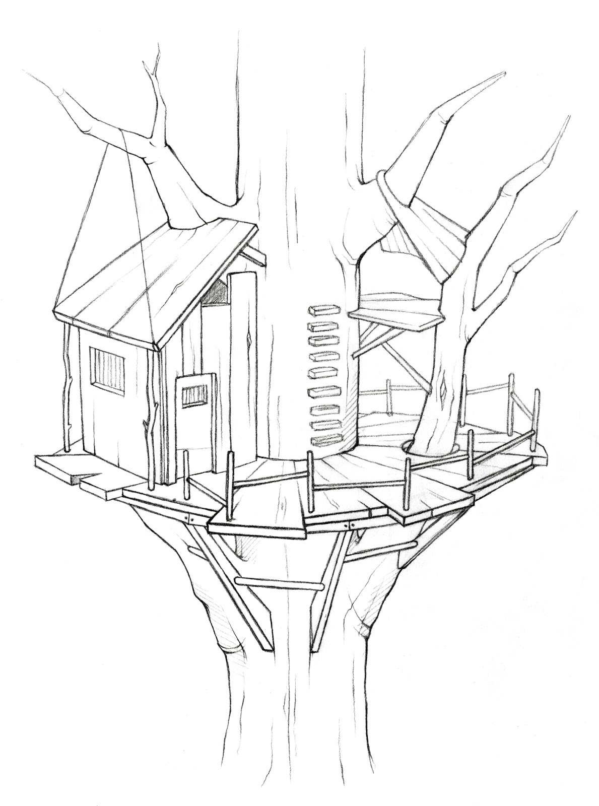 House Drawing Color: Dark Chocolate: Treehouse
