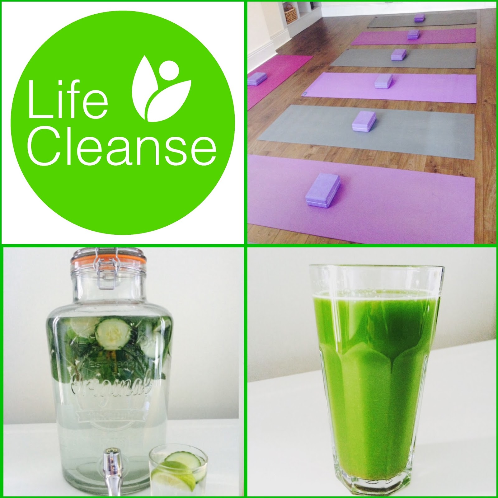 Life Cleanse Retreats