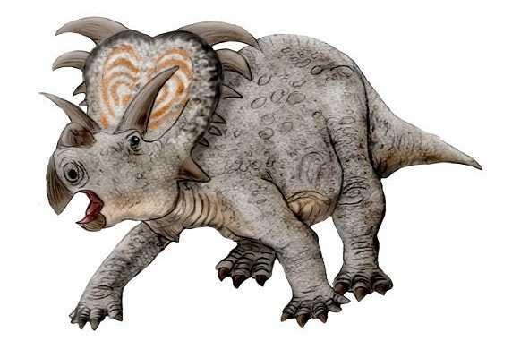 medusaceratops-ميديساسيراتوبس