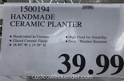Deal for the Handmade Ceramic Planter at Costco