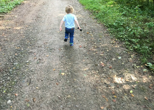 toddler-walking-along-forest-road-with-a-torch
