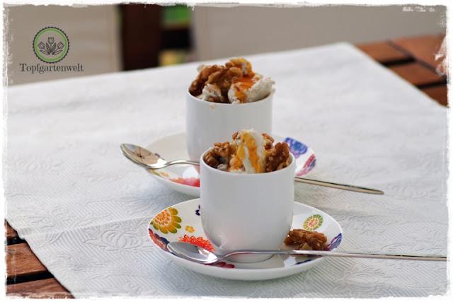 Frozen Yogurts mit Honig und Walnüssen - ein Rezept das an Griechenland erinnert - Foodblog Topfgartenwelt