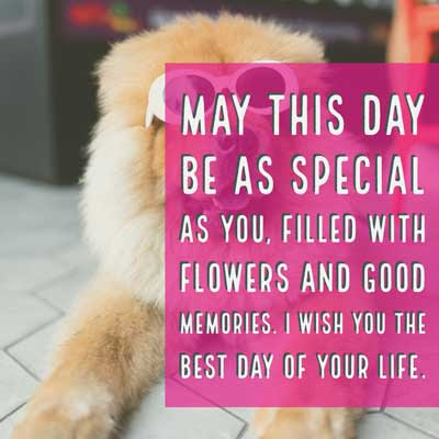 May this day be as special as you, filled with flowers and good memories. I wish you the best day of your life.