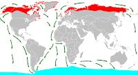 Rutas de migración