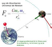 La masa es el módulo, el peso es el vector