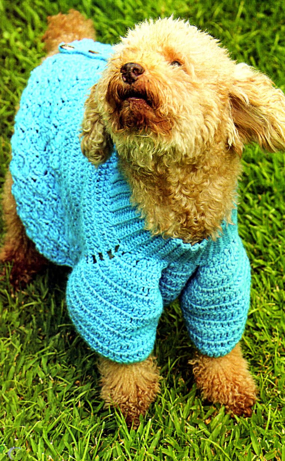 tejidos artesanales en crochet un abrigo para mascotas. Black Bedroom Furniture Sets. Home Design Ideas