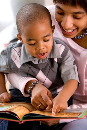 Wisconsin Model Early Learning Standards