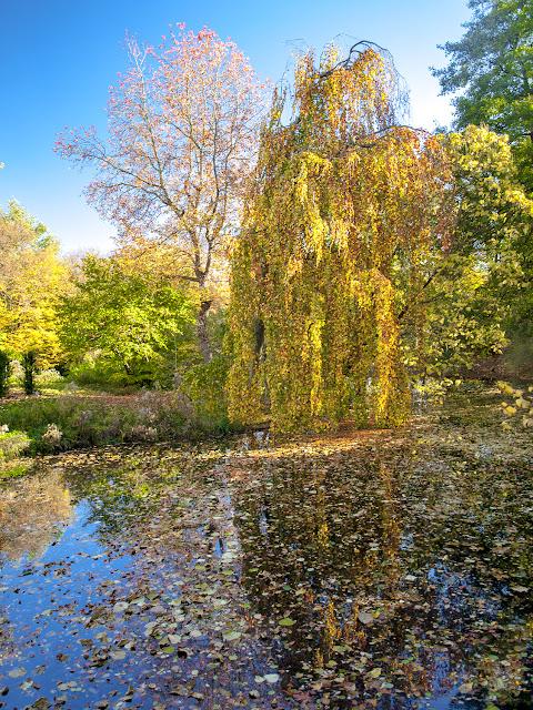 Tiergarten en otoño - Berlin por El Guisante Verde Project