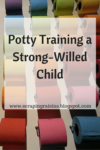 What we did and how it went when we attempted to potty train my strong-willed son.
