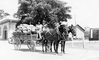 Mail Wagon at Kerrville 1933