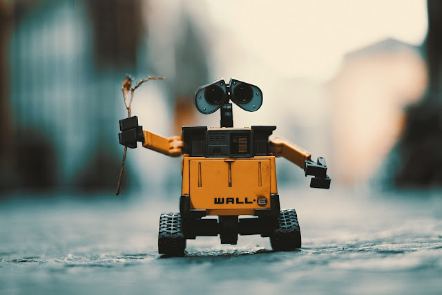 The Challenges of Robot Adoption