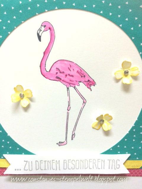 constanzes stempelwelt pink wie ein flamingo. Black Bedroom Furniture Sets. Home Design Ideas