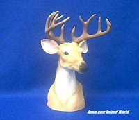 Buck Deer Head Figurine Statue