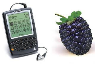 ¿Alguna vez se preguntó por qué los smartphones, producidos por RIM se llaman BlackBerry? Para desentrañar el misterio piensa la revista The New Yorker, que explica cómo RIM en el verano de 1998 acababa de crear un prototipo del tamaño de un teléfono que puede descargar y enviar correos electrónicos en tiempo real. Una búsqueda de un nombre digno de este innovador dispositivo, RIM busca el consejo de una compañía de California que se especializa en la búsqueda de nombres llamada Lexicon. Los primeros nombres de los candidatos elegibles que conocemos como el BlackBerry son: EasyMail,ProMail y MegaMail. ¿Qué hacen