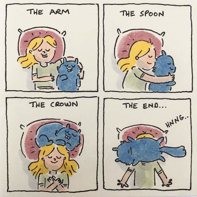 dormir con el gato humor