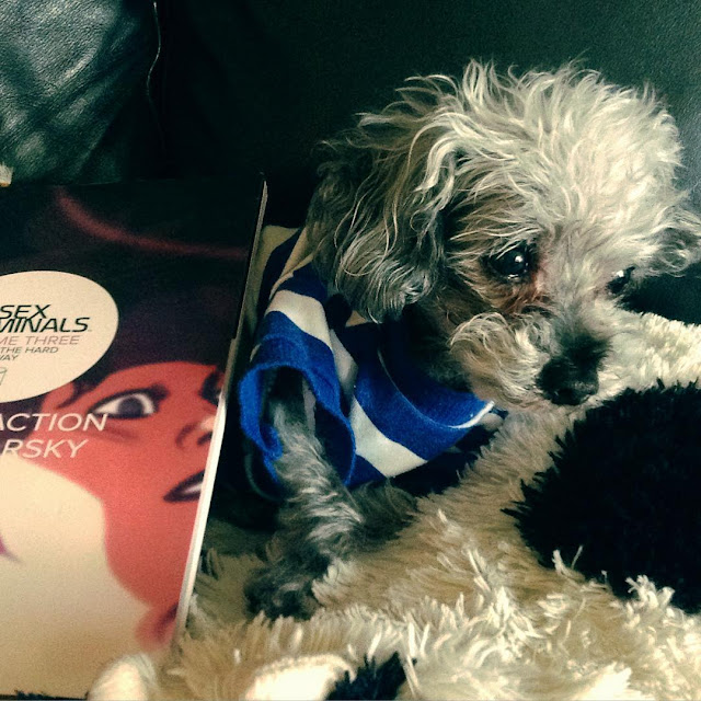 Murchie lies on a cow-shaped pillow, a look of great resignation on his face. A trade paperback copy of Sex Criminals Volume Three is propped up against him. The visible portion of the cover features a blurred drawing of a dark-haired white woman's face.