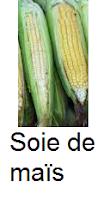 Soie de maïs éliminer les toxines dans les reins